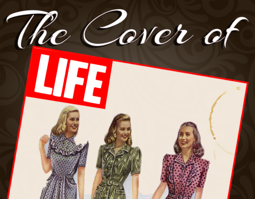 05_The-cover-of-life-01